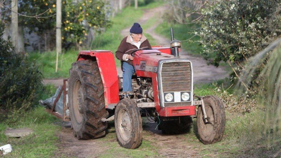 开拖拉机干农活的穆希卡(BBC)