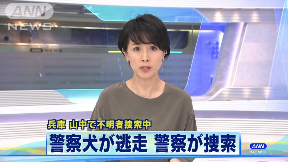 日本警犬寻找失踪人员时失踪 40名警员搜寻2天仍未果