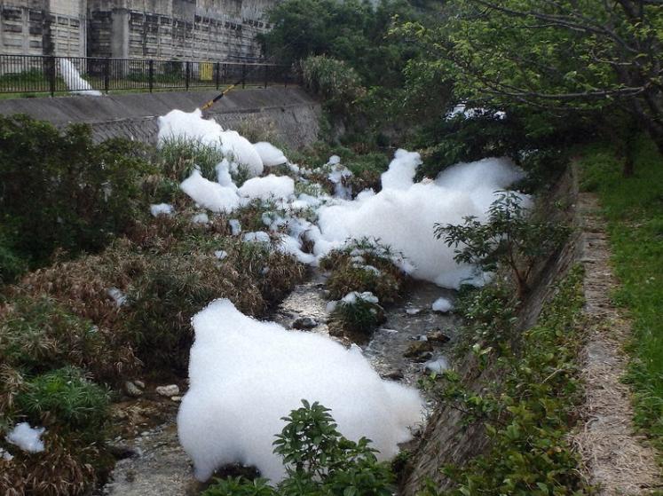 被泡沫染白的河流(资料图:日媒)