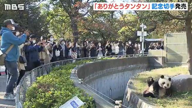 旦旦在神户市立王子动物园(日本MBS电视台)
