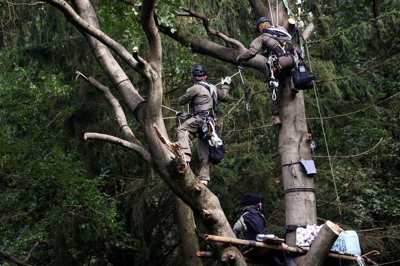 德国环保人士抗议森林里建高速 警察爬树上抓人(图)