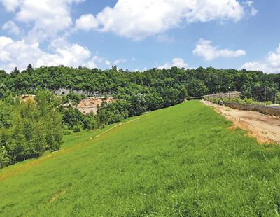 图为波尔铜矿尾矿库边坡生态治理后绿意盎然。紫金矿业供图