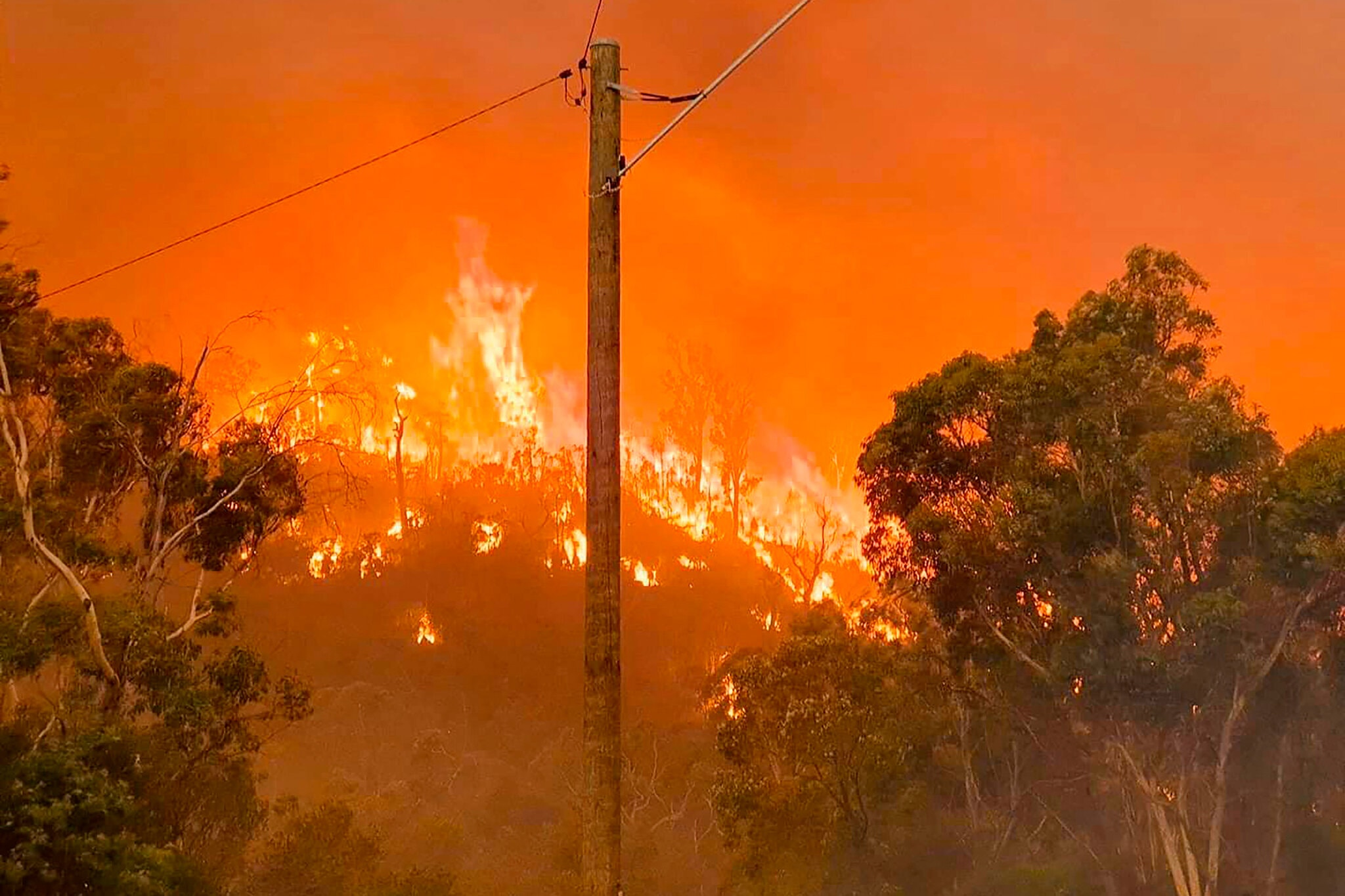 山火已经烧毁了至少71处房屋(美联社)
