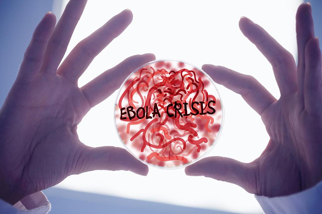 资料图:埃博拉病毒